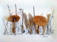 Souvenir-de-champignons