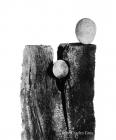 serie sculpture éphémere